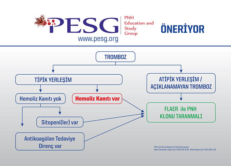 PESG Öneriyor - 3