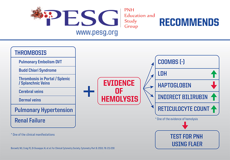 PESG Recommends - 2