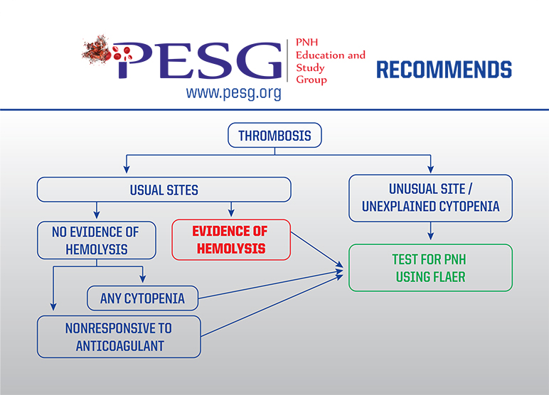 PESG Recommends - 3